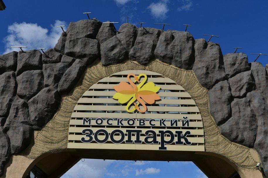 Московский зоопарк поздравил сотрудников и коллег с Днем кипера и Днем защиты животных