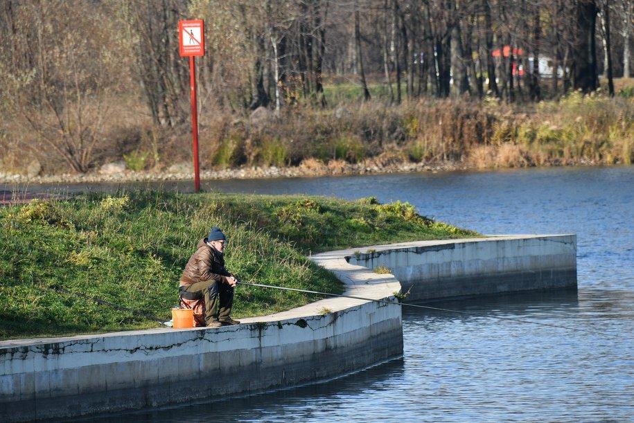 В 2021 году в Москве приведут в порядок ещё девять прудов