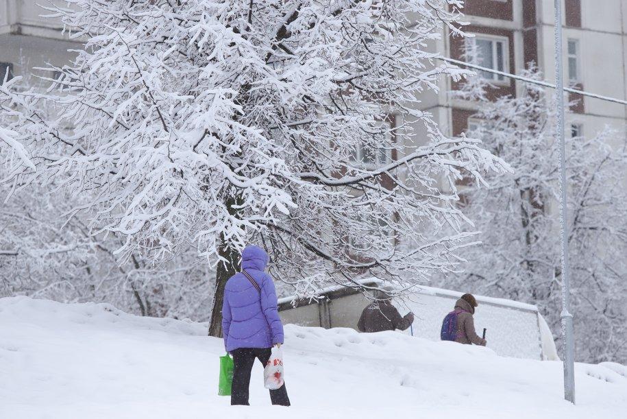 Москвичей ожидает морозный вторник