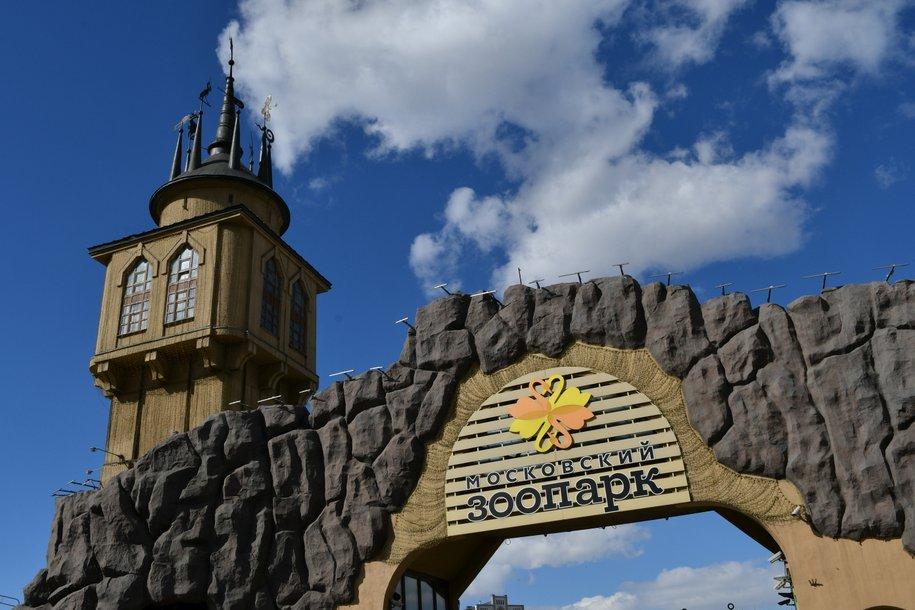 Реконструкция объектов Московского зоопарка завершится в текущем году