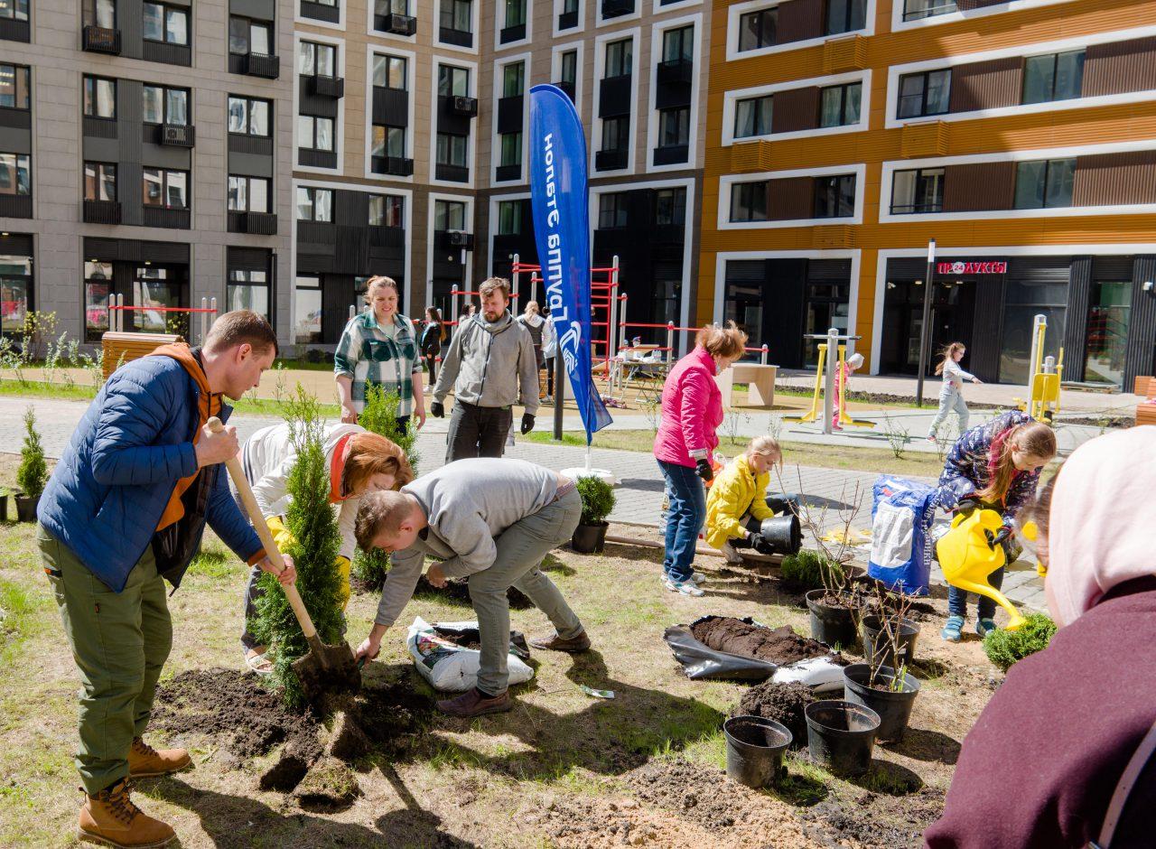 В ЖК «Нормандия» жители вместе с застройщиком озеленяют двор